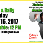 March and Rally for Zimbabwe