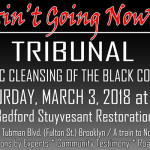 We Ain't Going Nowhere: Tribunal on Ethnic Cleansing of the Black Community